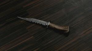 Thedemonkillingknife