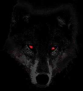 lupo occhi rossi