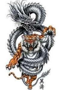 tatuaggio drago con tigre