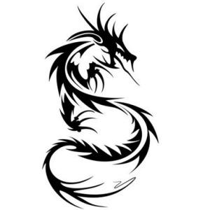 tatuaggio drago tribale