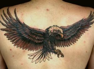 tatuaggio-aquila-1